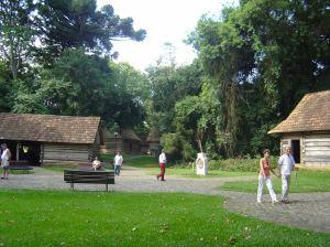 Bosque_do_Papa_pope_woods_curitiba_parks_brazil_curitiba_photos_curitiba_pictures